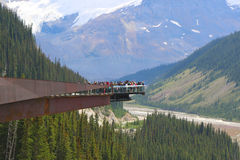 Glacier Skywalk in Jasper National Park Stock Images