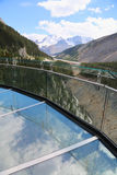 Glacier Skywalk in Jasper National Park Stock Photography