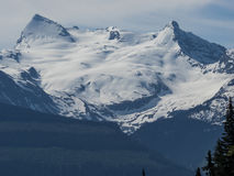 Glacier and snow on the Rocky Mountains Royalty Free Stock Photography