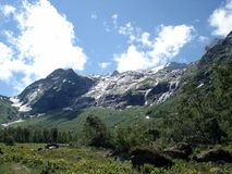 Glacier in summer Royalty Free Stock Photography