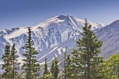 Glacier sur une montagne Images stock