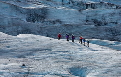 Glacier trekkers Royalty Free Stock Images