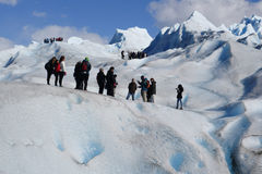 Glacier Trekking in Patagonia Stock Photography
