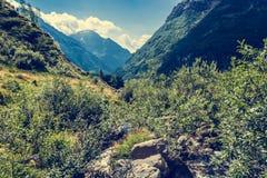 Glacier valley. Stock Image