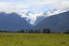 Glacier view. Beautiful view of a glacier and nearby landscape in Westland National Park, South Island, New Zealand Royalty Free Stock Photo