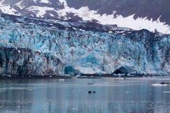 Glaciers à la baie de glacier, Alaska image libre de droits