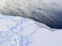 Glaciers et icebergs Image stock