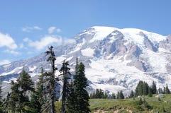 Glaciers on Mount Rainier Stock Image