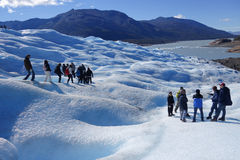 Glaciär som Trekking i Patagonia Arkivfoto