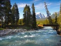 Glacjalna rzeka, góry, Kanada Obraz Stock