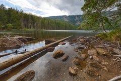 Glacjalny Czarny jezioro otaczający lasem Zdjęcie Stock