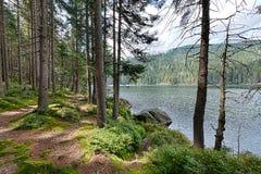 Glacjalny Czarny jezioro otaczający lasem Zdjęcia Royalty Free