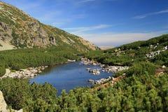 glacjalny jezioro Zdjęcie Royalty Free