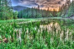 Glacjalny jezioro w Niskich Tatras górach, Sistani Zdjęcie Royalty Free