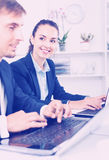 Glad business female assistant wearing formalwear using laptop. Glad  diligent business female assistant wearing formalwear using laptop in company office Stock Photos