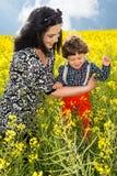 Glad familj i canolafält Royaltyfri Foto