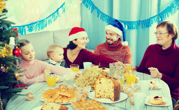 Glad family members making conversation. During Christmas dinner Royalty Free Stock Image