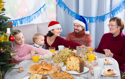 Glad family members making conversation. During Christmas dinner Royalty Free Stock Photography