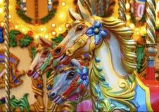 Glad-gå-runda hästar Royaltyfri Foto