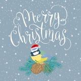 Glad jul med fågeln Royaltyfri Fotografi