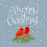 Glad jul med fågeln Arkivbild