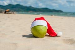 Glad jul och det lyckliga nya året på sommaren sätter på land Kokosnöt i den santa hatten Gömma i handflatan och blå himmel på ba Royaltyfria Bilder