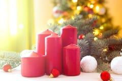 Glad jul! Röd adventblommaordning med bränningstearinljus på Cristmas trädbakgrund royaltyfri bild