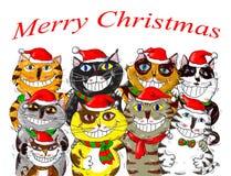 Glad jul Santa Cats Greetings Arkivbild