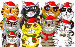Glad jul Santa Cats Greetings Royaltyfri Foto