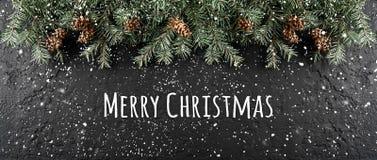 Glad jul som är typografisk på mörk feriebakgrund med ramen av granfilialer, sörjer kottar royaltyfria foton