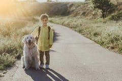 Glad liten unge som går med hans husdjur royaltyfri fotografi