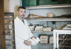 Glad man working and packing white hen eggs Stock Photography