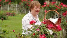 Glad mature woman gardener stock video