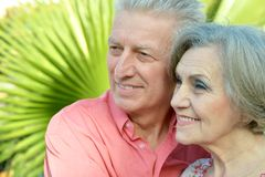 Glad old people at the resort Stock Photos
