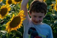 Glad ung pojke för skönhet med solrosen som tycker om naturen och skrattar på sommarsolrosfält Sunflare solstrålar, glöd arkivfoton