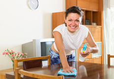 Glad woman cleaning interior using spray Stock Image