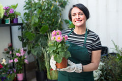 Glad woman florist smiling among the potted plants Stock Photography