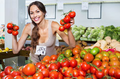 Glad young woman picking fresh tomatoes Royalty Free Stock Photos