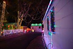 glada trees för jul Royaltyfri Bild