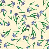 Gladdonhand getrokken patroon op beige Royalty-vrije Stock Fotografie