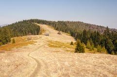 Glade в горах Gorce в Польше Стоковая Фотография RF
