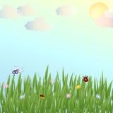 Glade с травой и насекомыми Стоковое Изображение RF