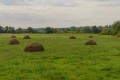 Glade с haystacks стоковое изображение