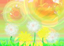 Glade with dandelions Stock Image