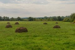 Glade with haystacks Stock Image