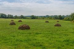 Glade with haystacks Royalty Free Stock Photo