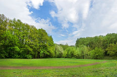 Glade for horse dressage. In park of Tula city, Russia royalty free stock photos