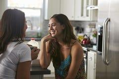 Glade kvinnliga par i deras 20-tal som talar i deras kök Arkivbild