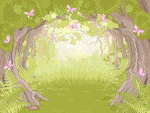 Glade in Magic forest. Beautiful Glade in the Magic forest Royalty Free Stock Photo