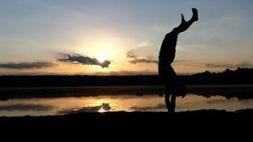 Glade mandanser utformar dans på en sjöbank på solnedgången lager videofilmer